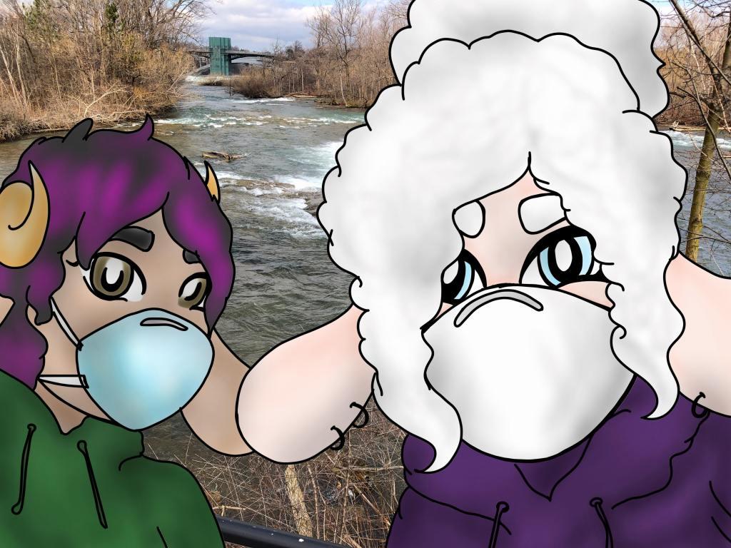 Sheepie Niagara and Ellis during the COVID-19 lockdown in Niagara Falls State Park