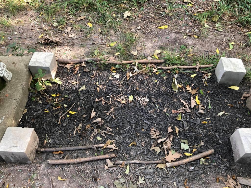 Branches along the grave of Eliza Keig. Niagara Falls, NY.
